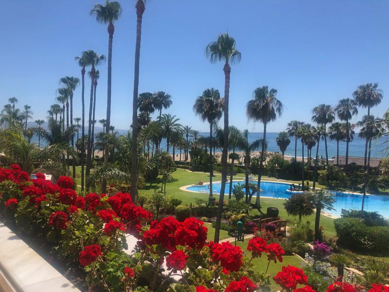 Property Marbella 5