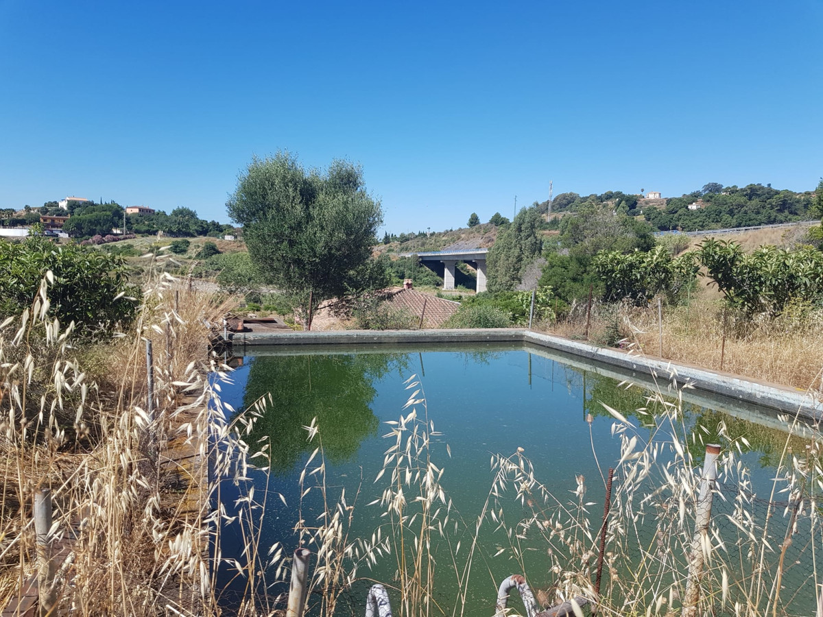 Fantastic finca in the Estepona countryside ,El Pdron,  with fantastic panoramic views of the Medite,Spain