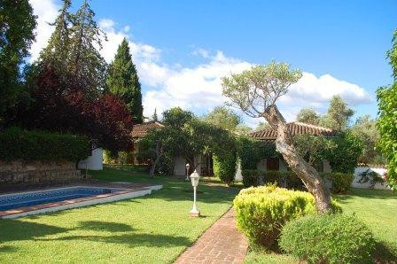 An amazing investment  a bed and breakfast or guesthouse ideally situated on the outskirts of Alhaur,Spain