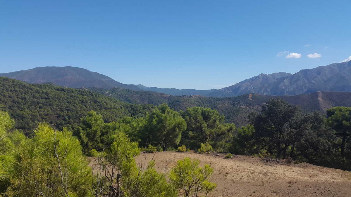 New Development: Prices from € 5,950,000 to € 5,950,000. [Beds: 5 - 5] [Baths: 5 - 5] [Bui,Spain