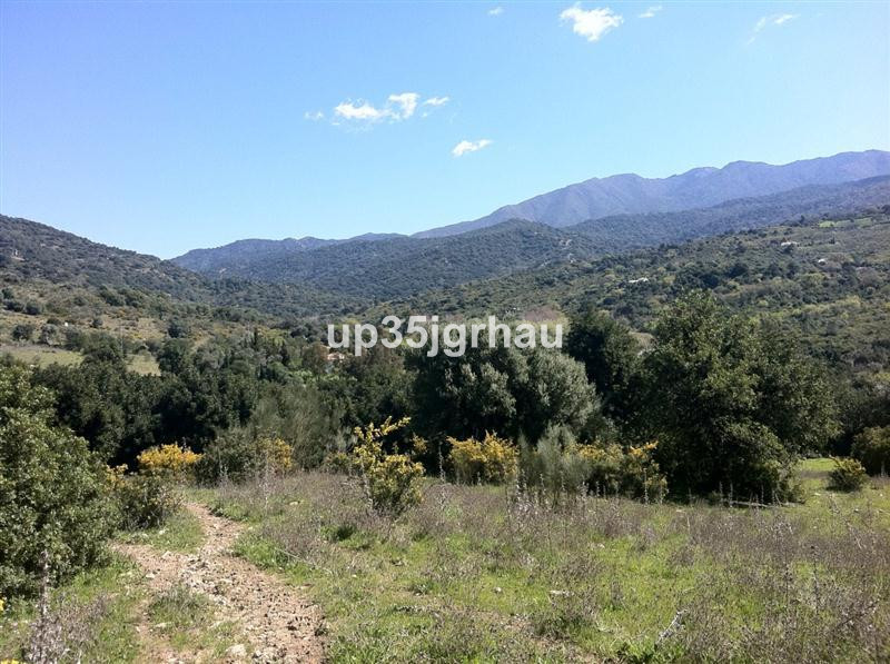 Land, Casares, Costa del Sol. Garden/Plot 1000000 m².  Setting : Country, Close To Golf, Close To Po,Spain