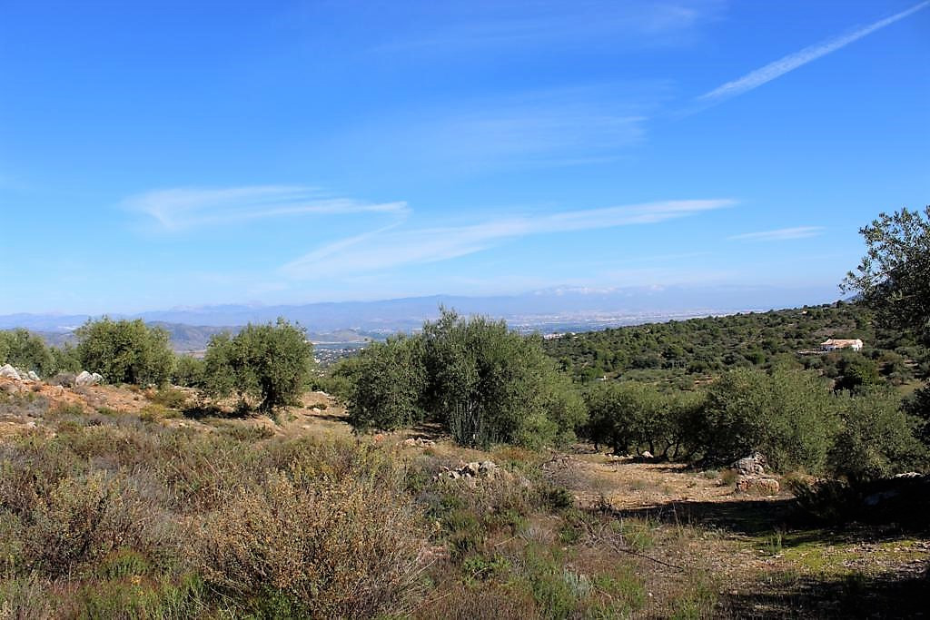 Rustic land for agricultural use of 12,000 m2 in Alhaurin el Grande. Located 5 minutes south of the , Spain