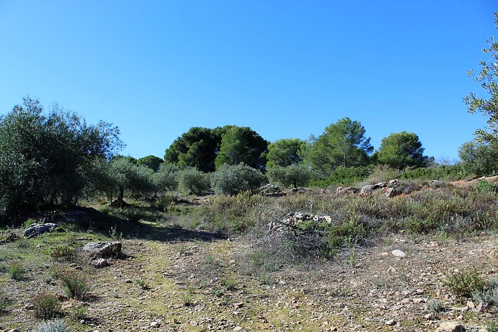 R3302530: Plot for sale in Alhaurín el Grande