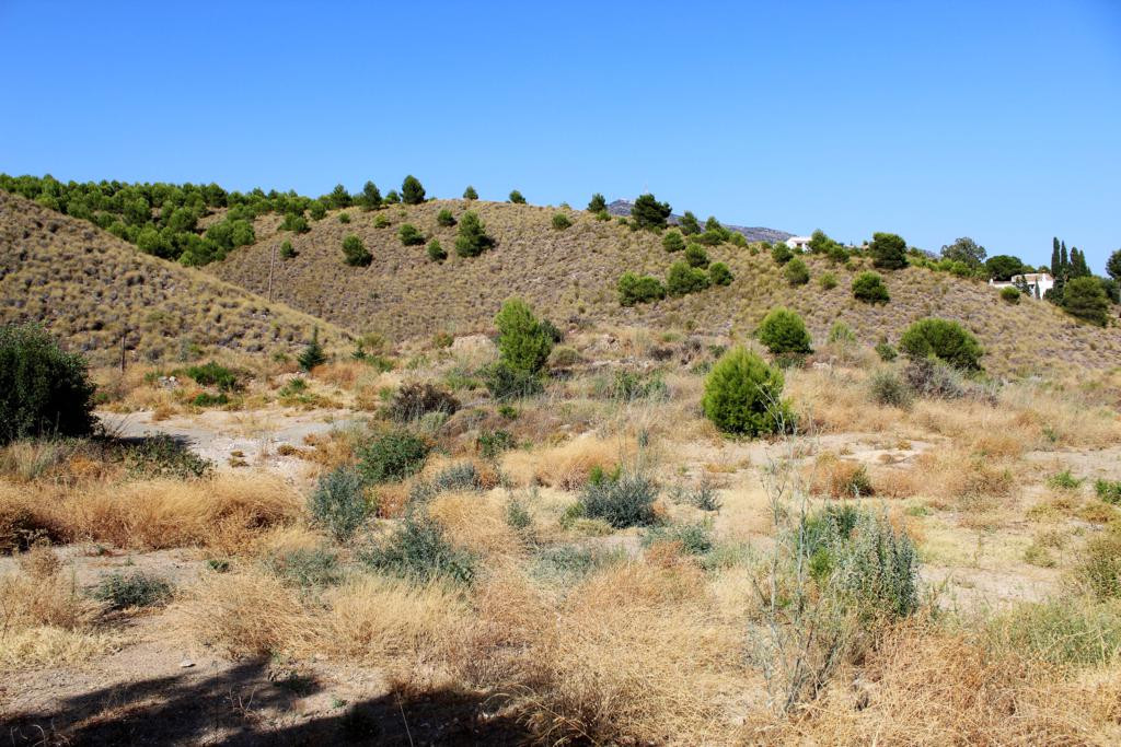 Plot of 850m2 located near the road of Mijas about 500 meters from the village of Mijas. A privilege, Spain