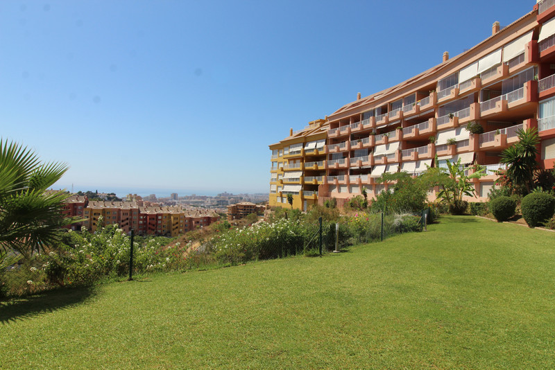Immobilien Los Pacos 2