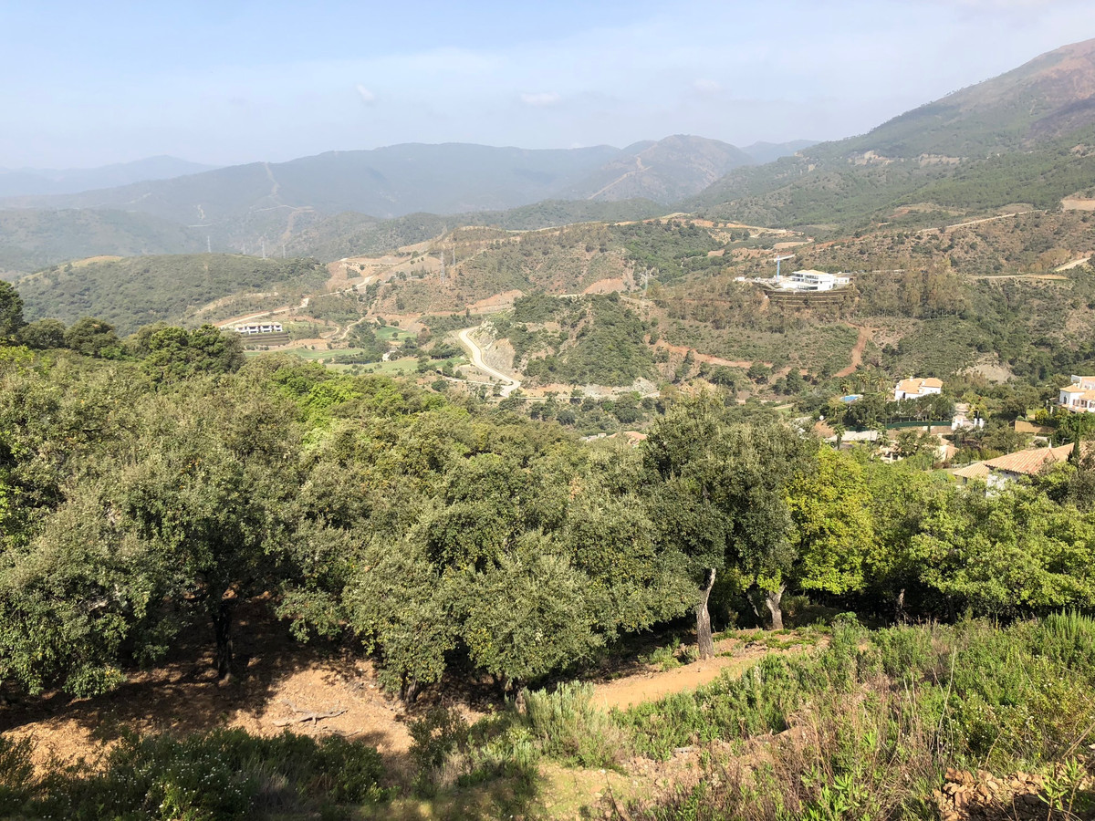 Beautiful secluded and extremely private south wets facing plot of land located within G section in ,Spain