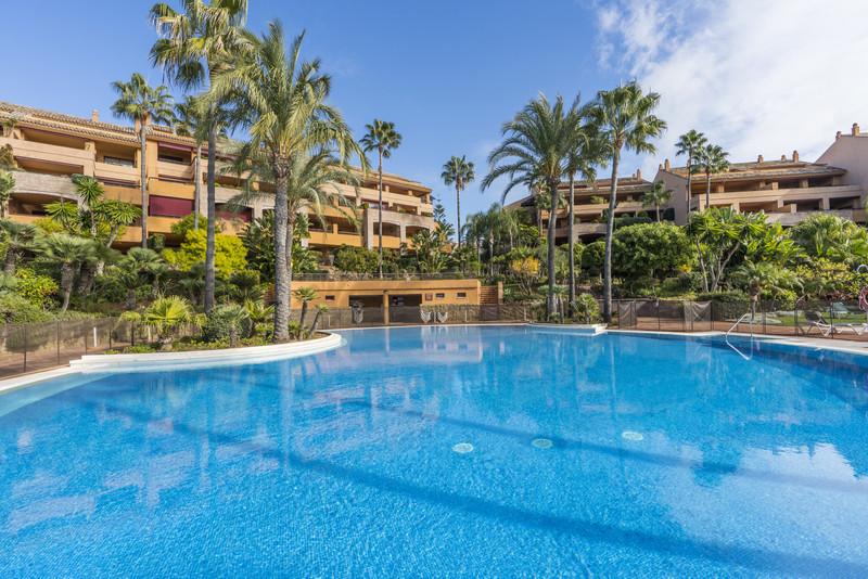 Immobilien Bahía de Marbella 7