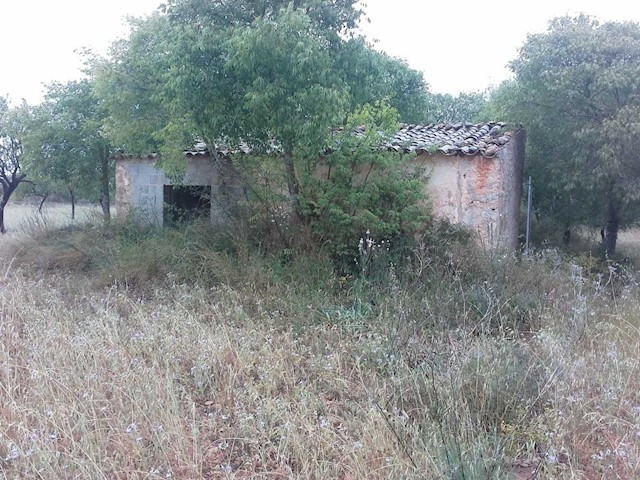 Building plot with two small casita?s on the Cami Velar between Biniali and Biniagual, situated in t,Spain