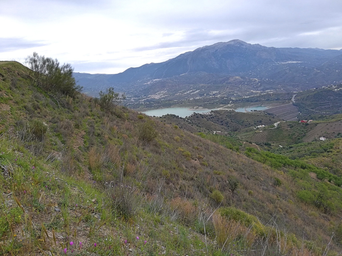 RUSTIC LAND OF 9700 m² IN VINUELA, MALAGA  Land for sale with an area of ??9700 m² located in the to,Spain